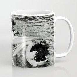 Australian pelicans Coffee Mug