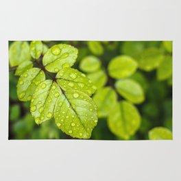 Plant Patterns - Green Scene Rug