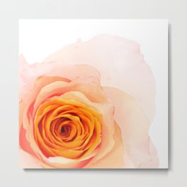 Light Orange Rose Metal Print