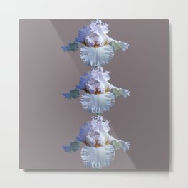 SNOW WHITE SPRING IRIS  GREY MONTAGE Metal Print