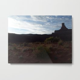 Canyonland flowers Metal Print