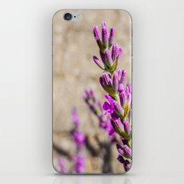 lila am Weg iPhone Skin