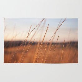 Fall Sunset Photography Print Rug