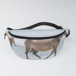 Horse Horse beach Fanny Pack