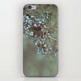 Cedar Berry iPhone Skin