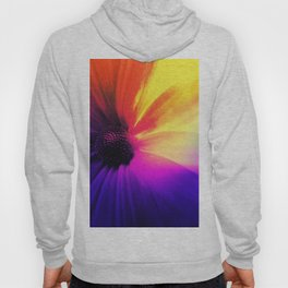 Floral Infusion Hoody