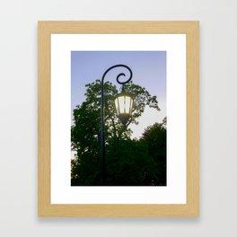 Sunset Lamppost Framed Art Print