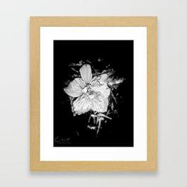 Tanto Amor IV Framed Art Print