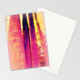 Nr. 416 Stationery Cards