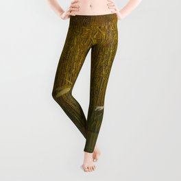 Dragonfly in Fields of Gold - Magical Realism Leggings
