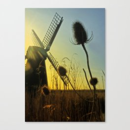 Lazy Hazy Summer Canvas Print