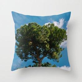 Italian Stone Pine Tree III Throw Pillow