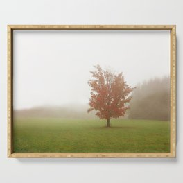 Maple Tree in Fog with Fall Colors Serving Tray