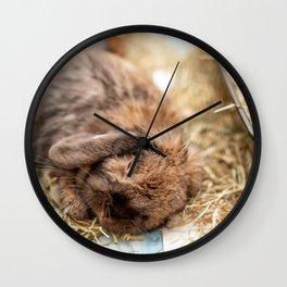 Cute lop eared bunny rabbit sleeping Wall Clock