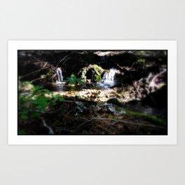 Natural Pool Art Print