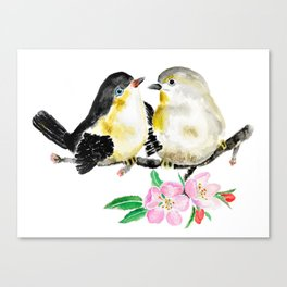 birds and apple flower blossom Canvas Print