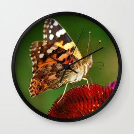 Butterfly macro 64 Wall Clock