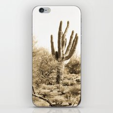 Saguaro iPhone & iPod Skin