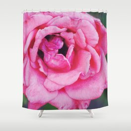Springtime, 2012 Shower Curtain