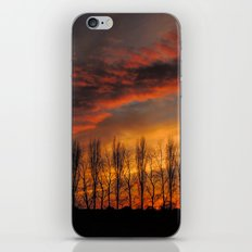 Afterglow iPhone & iPod Skin