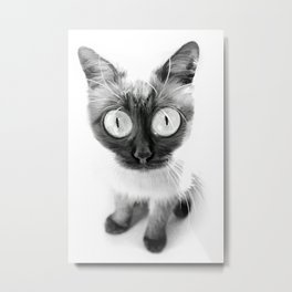 Funny alien cat Metal Print