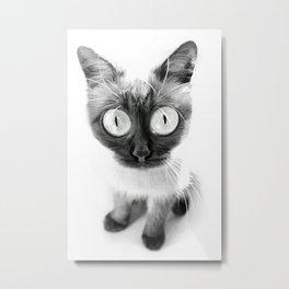 Funny alien cat Metal Print