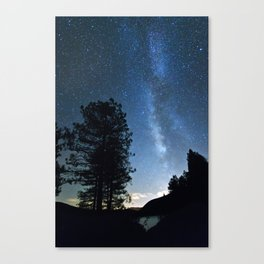 Night at the forest Canvas Print