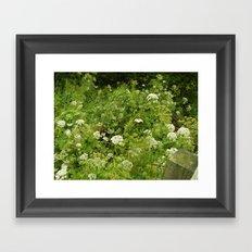 summer in Devon Framed Art Print