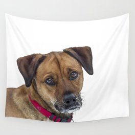 Puppy Dog Eyes Wall Tapestry