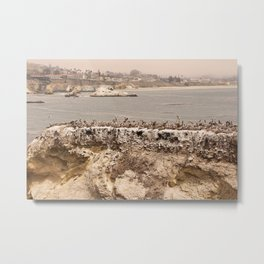 Shell Beach Metal Print