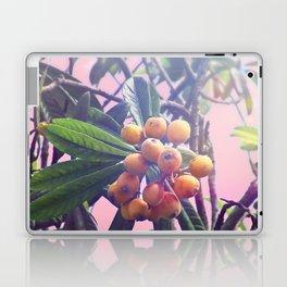 Loquat Laptop & iPad Skin
