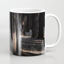Distracted by light Coffee Mug