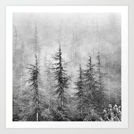 """""""Wilderness"""". Into the foggy mountains Art Print"""