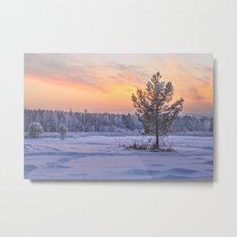 Frosty Evening Metal Print