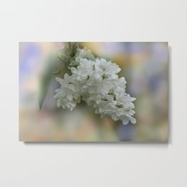 the beauty of a summerday -51- Metal Print