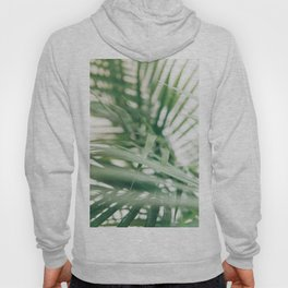 Tropical palm leaves with shadow in hd photography Hoody