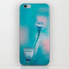 POPPY SEEDS iPhone & iPod Skin