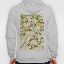 Grammangis ellisii 'Orchid' 1860 Hoody