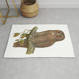 Lonely Owl Realistic Painting Rug