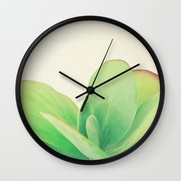 Paddle Plant Wall Clock
