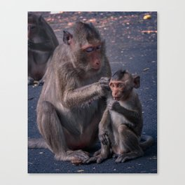 Mother and Baby Macaque Monkey Canvas Print