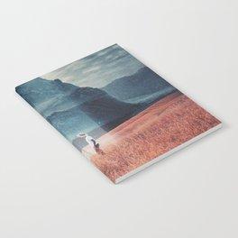 Andromeda Notebook