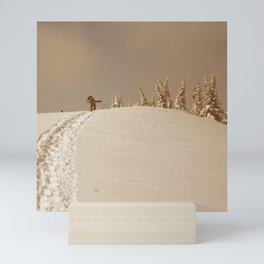 Winter day 5 Mini Art Print