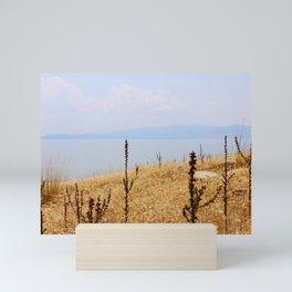 Blue Gold Hues Salt Lake Mini Art Print