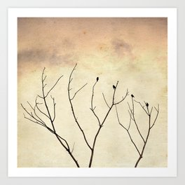 Four Black Birds Art Print
