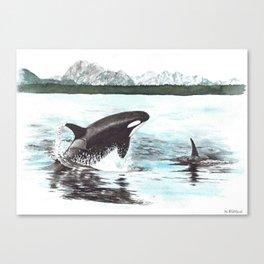 Orca's Canvas Print