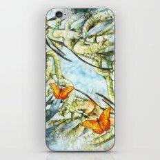 beautiful painted butterflies on wattle iPhone Skin