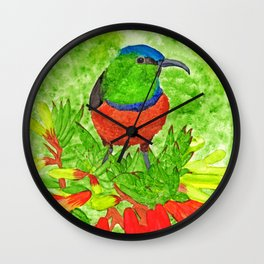 Double Collared Sunbird Wall Clock
