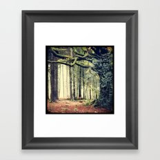 Hêtre de Ponthus - Legendary Trees of Brocéliande Framed Art Print