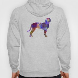 Austrian Black and Tan Hound in watercolor Hoody
